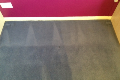 The same carpet  after a good clean - much better!